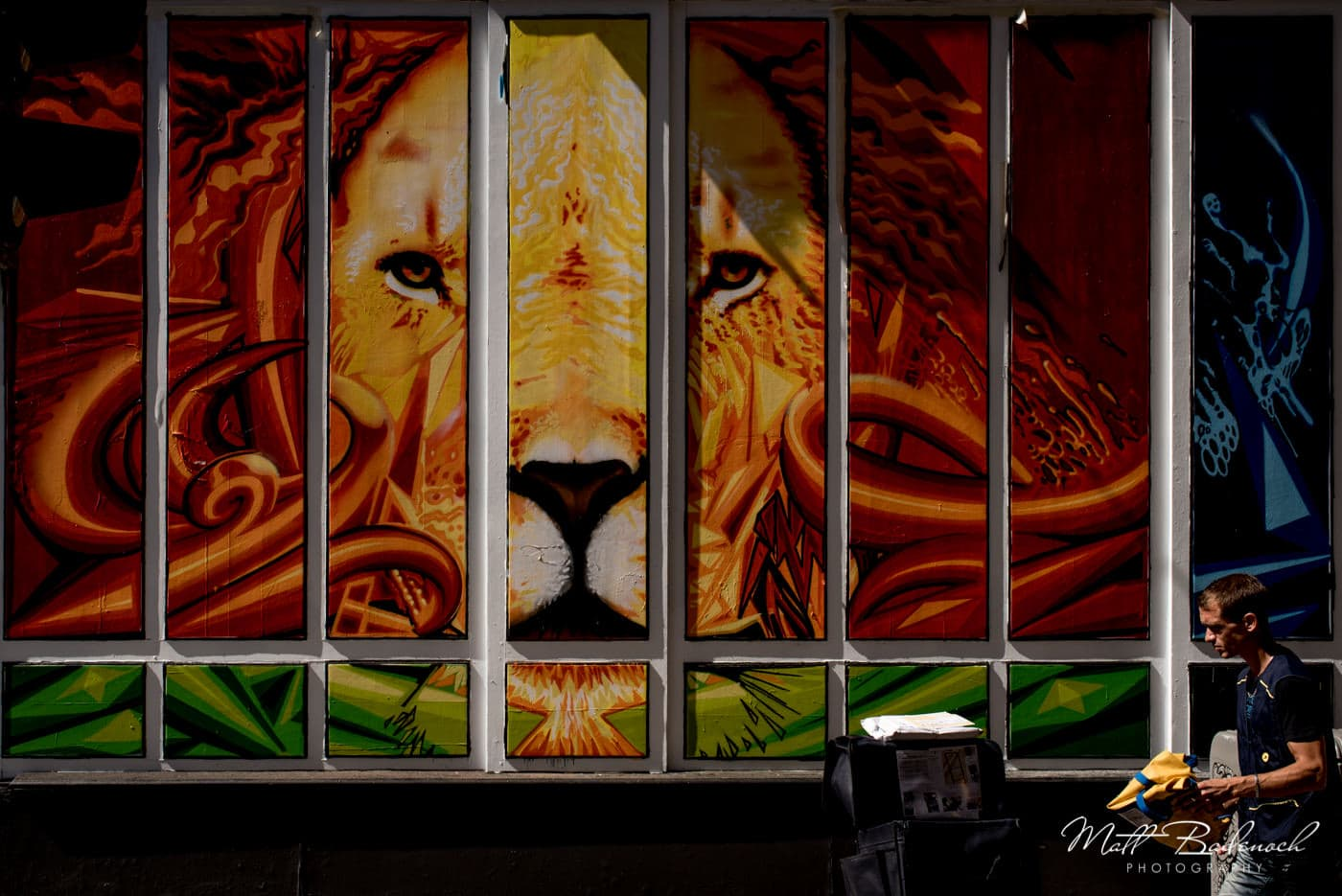Lion grafitti/ street art | bordeaux street photography