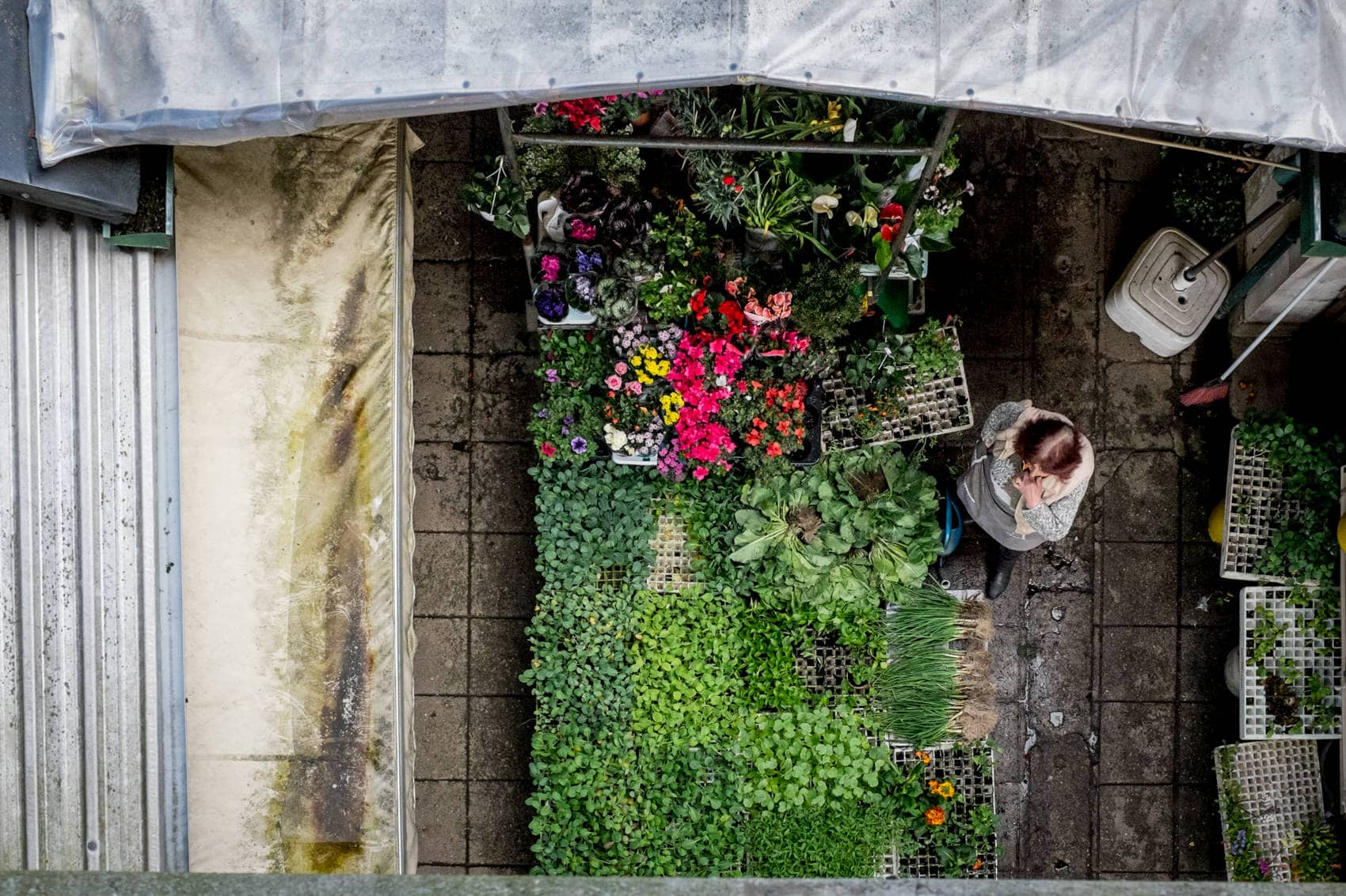 view from above of Mercado do Bolhao market in Porto Street Photography