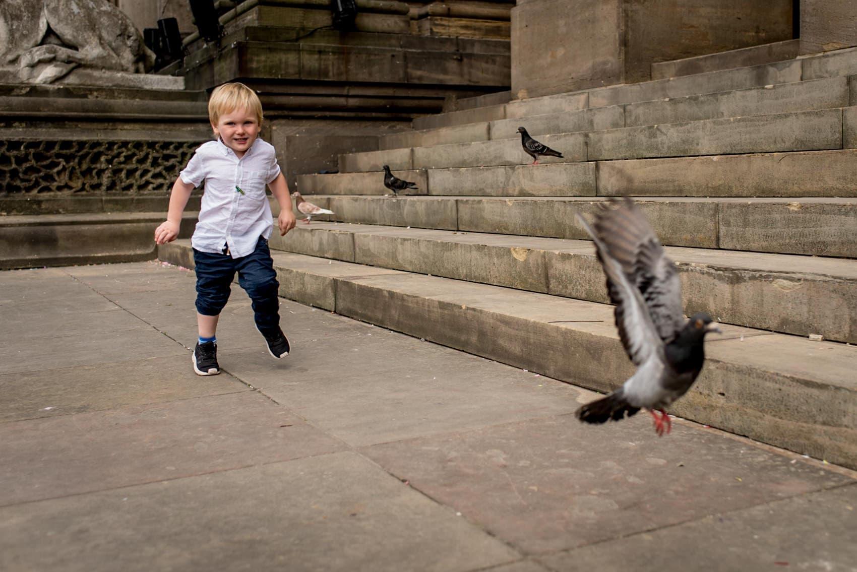 boy chasing pigeon