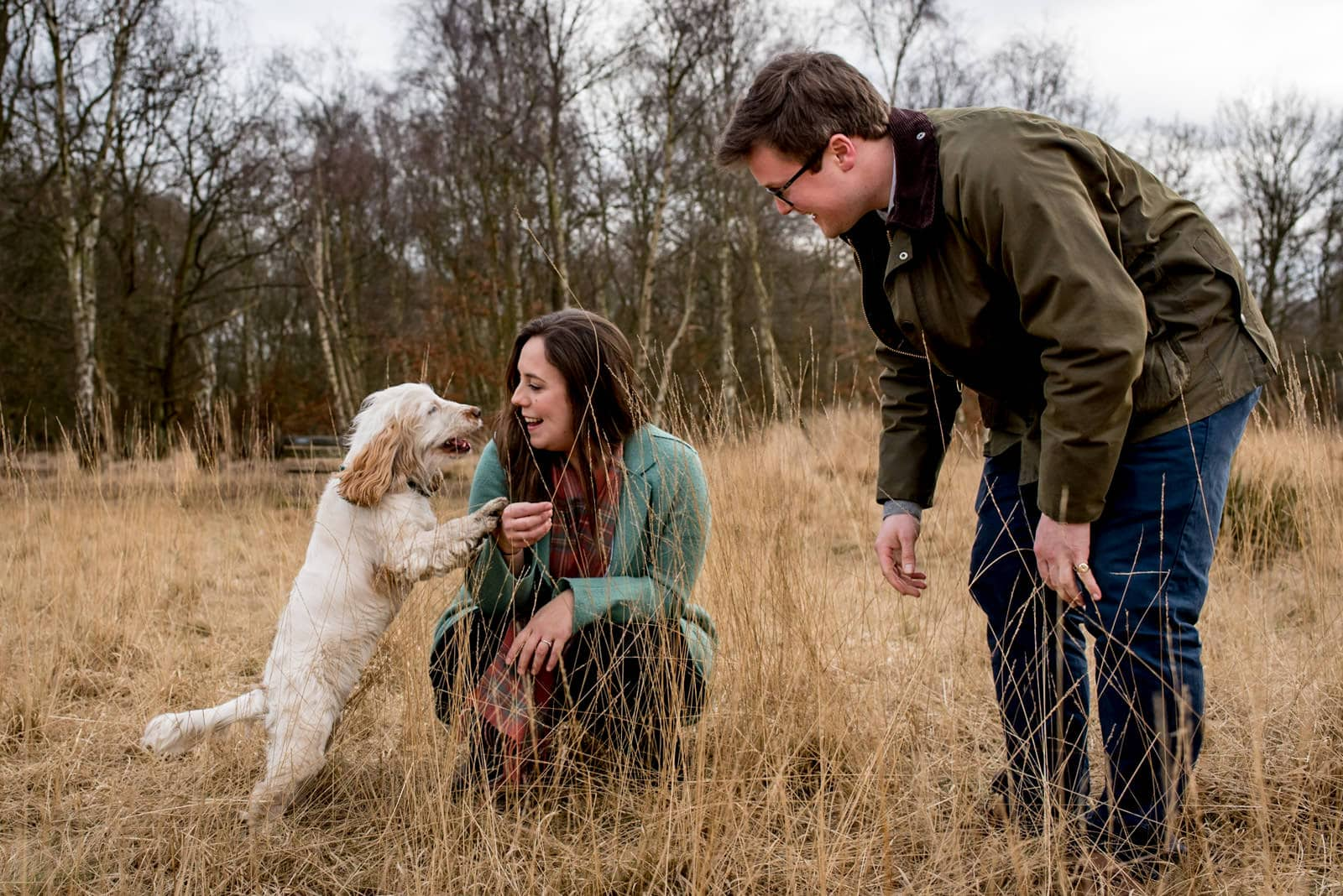 Dog walking engagement photos in a park