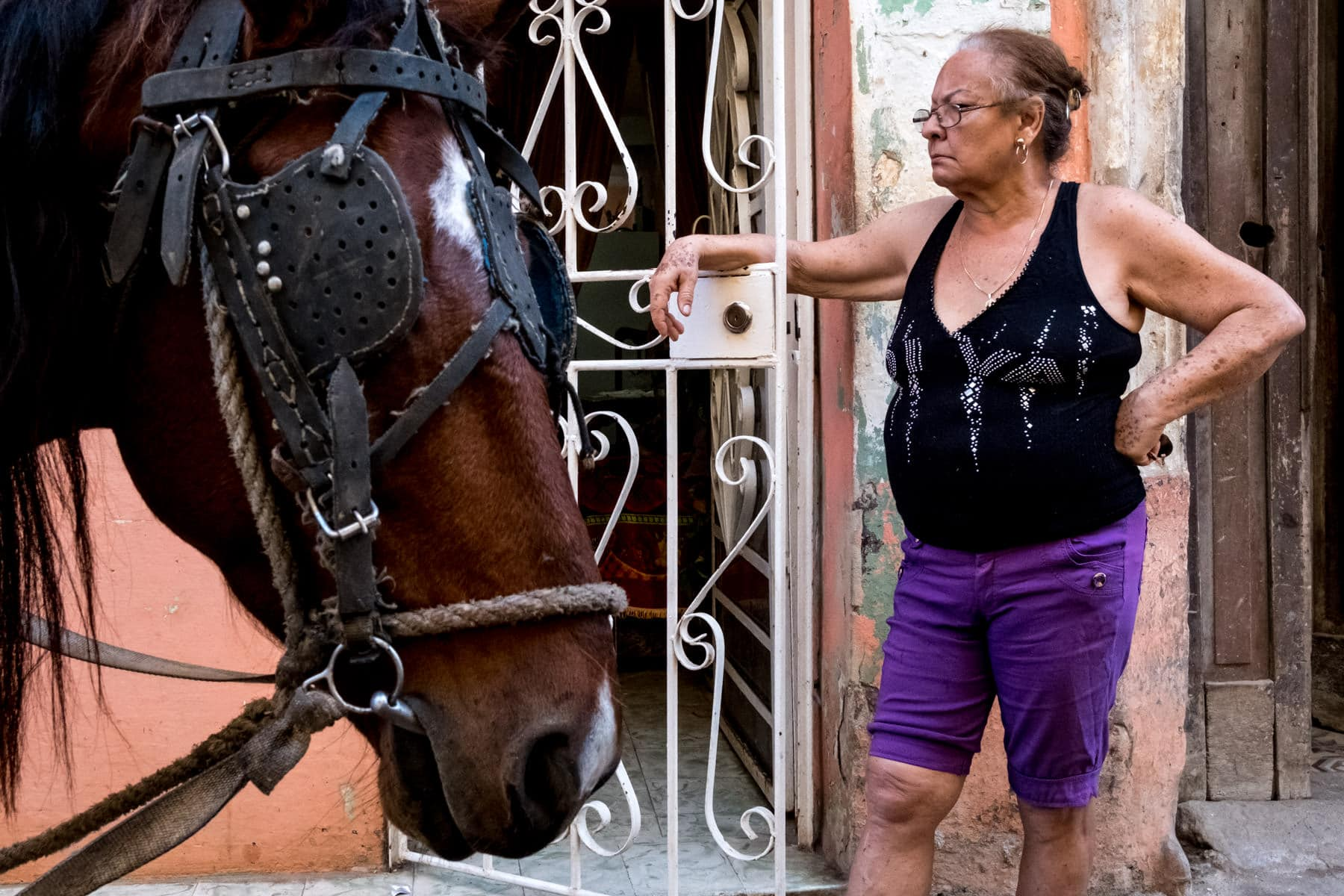 An old women and a horse on the streets of Havana